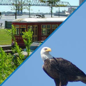 Louisiana Tour Company Combination Tours