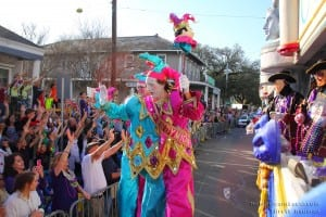 local tours in New Orleans