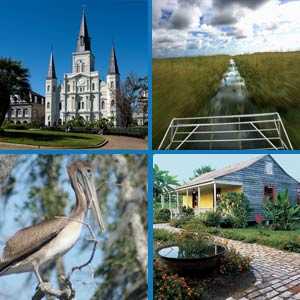 New Orleans Combination Tours - Swamp, Plantation, City, or Ghost Tour Combo
