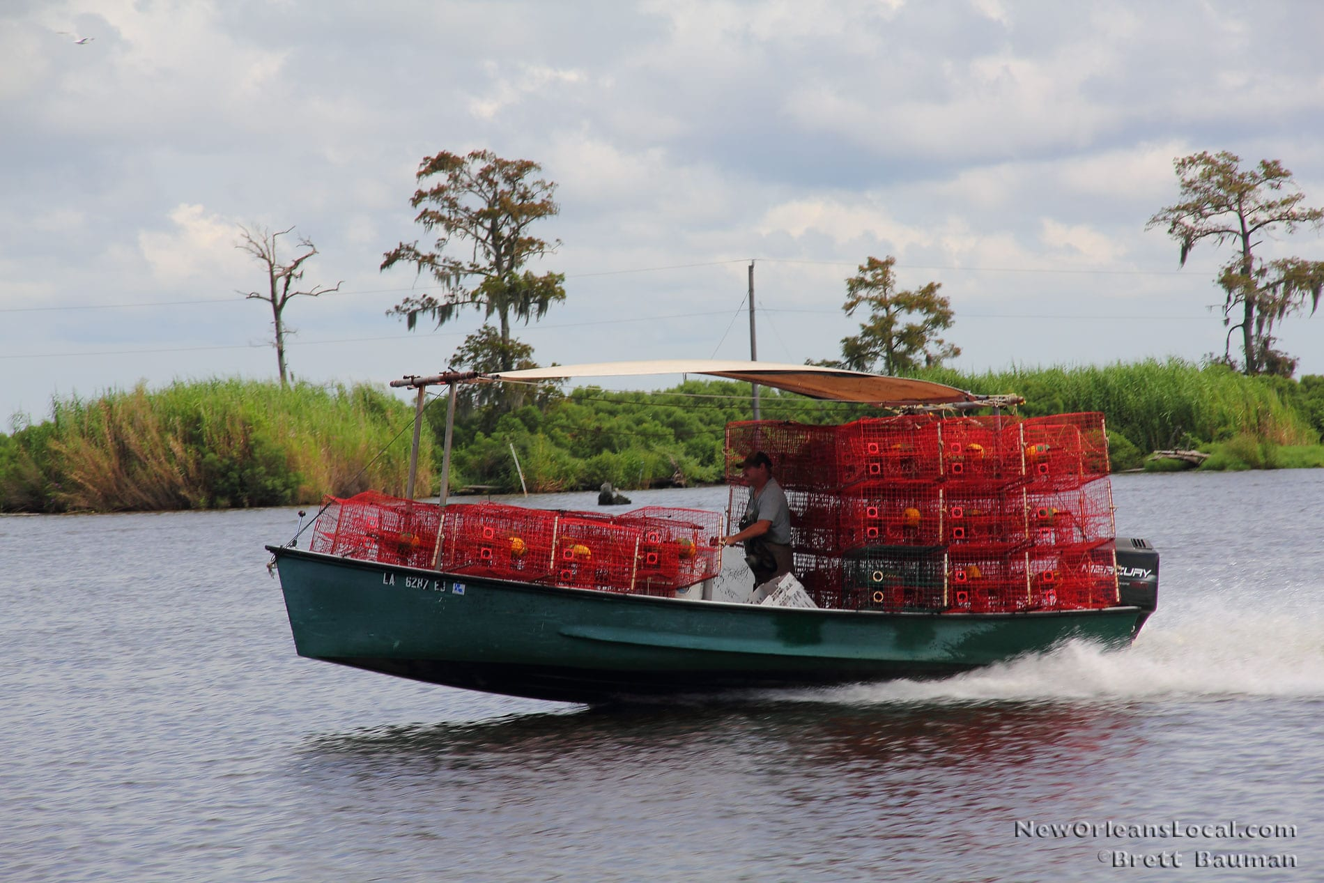 Crabbing in the Swamps, Photo Gallery