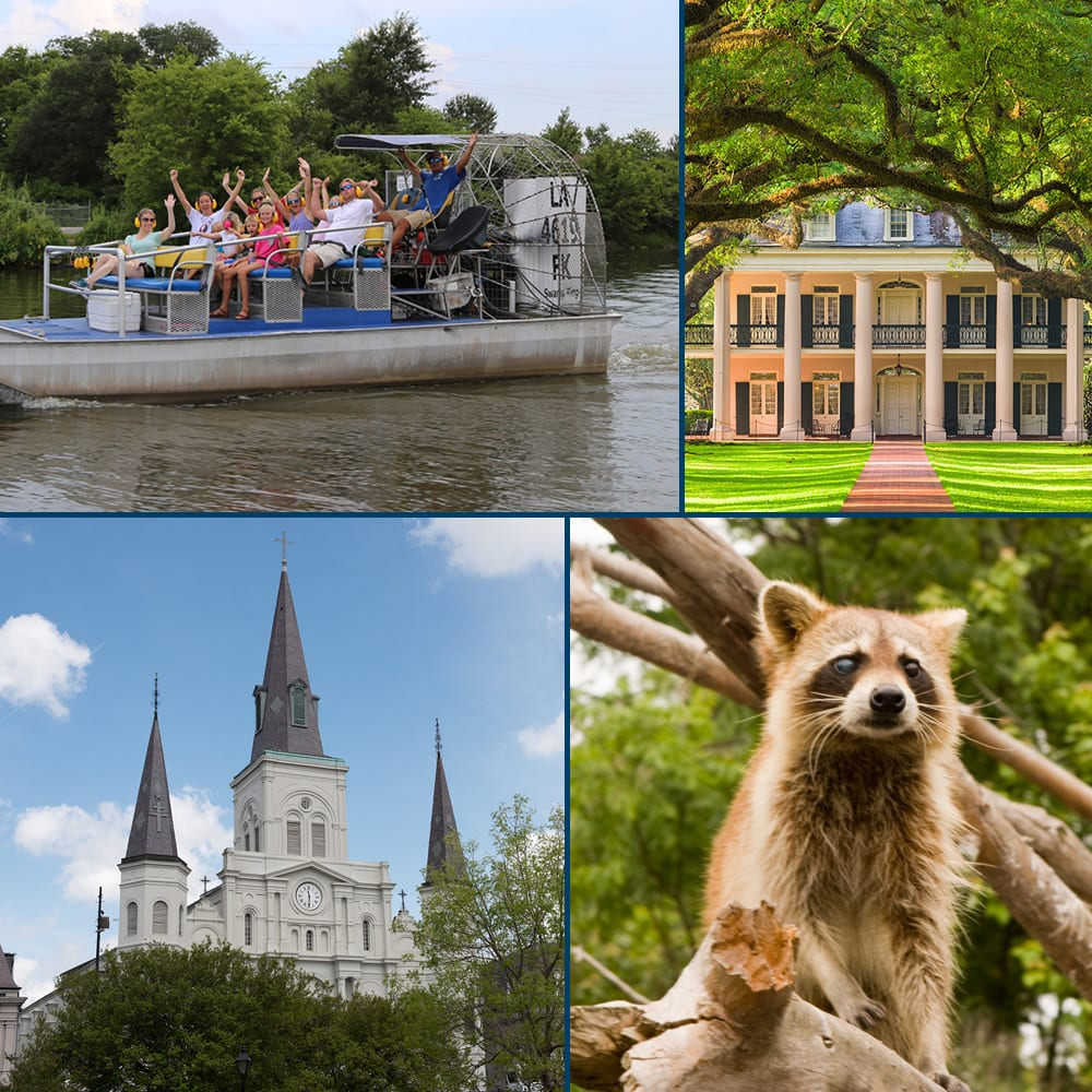 Combination Tours, New Orleans Swamp Tours