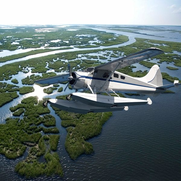 Cajun Invasion Seaplane Tour, New Orleans Swamp Tours
